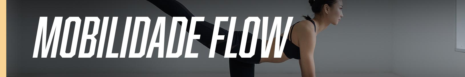 banner_aula_breathe-flow-1629X271